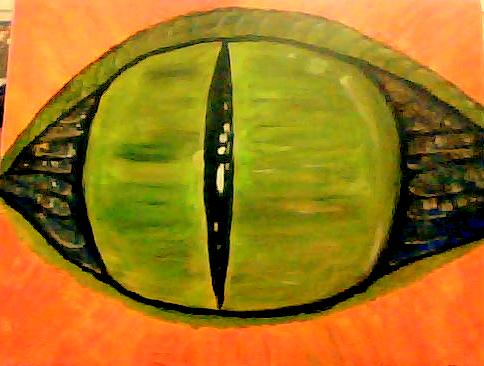 The Eye 16x20 Acrylic