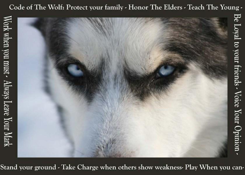 Wolf Code